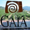 Gaia winery Nemea